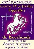 cheval Brocéliande