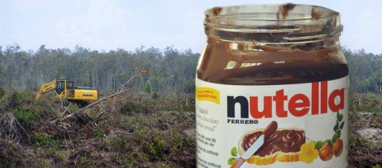pétition sauvons la forêt !